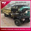 Nuevo tipo carro diesel de Factroy de la granja del motor de la potencia UTV/de la alta calidad