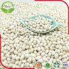 乾燥された白い腎臓豆180-200