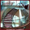Precios de vidrio Barandilla Arco Escalera (DMS-2006)