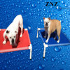 Znz wasserdichtes Innenhaustier-Mehrfarbenbett (ZD011)