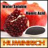 Regulador natural del crecimiento vegetal del ácido húmico del uso de Huminrich Leonardite