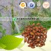Естественное травяное сырье Root Combined Spicebush