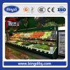 Precio comercial del congelador de refrigerador de la mini visualización del gas