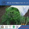 Tela não tecida da agricultura do Polypropylene com o UV em China