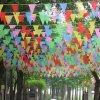 Bandierine stampate promozione ecologica su ordinazione del partito dello stendardo del triangolo