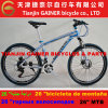 Tianjin Gainer 26  MTB Bicycle Aluminum 21sp