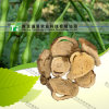Ginseng natural puro Ren Shen da medicina da erva da fonte do fabricante