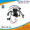 Fournisseur automobile de Shenzhen de câble équipé de harnais de câblage