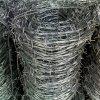 Torsion galvanisierten Stacheldraht aussondern