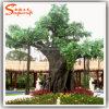 Albero artificiale artificiale del dell'impianto dell'albero di Banyan dell'albero del Ficus della decorazione del giardino