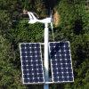 Gerador de turbina do vento da alta qualidade