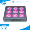Diodo emissor de luz Lamp de Evergrow 9 Module Design Greenhouse para Growing
