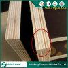 La película del grado de la construcción hizo frente a la madera contrachapada