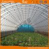 식물성 설치를 위한 갱도 온실