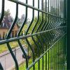 Cerca revestida galvanizada y de epoxy del acoplamiento de alambre