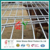 Qym-High Quality Double Circles Wire Fence avec Lower Price
