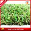 مرج اصطناعيّة يرتّب عشب يجعل في الصين