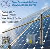 1HP 750W versenkbare Solarwasser-Pumpe, tiefe wohle Pumpe