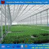 花のための新しいガラス園芸の温室は育つ