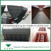 Nuevo escala que introduce calificada del diseño colmo para la planta de la cerámica