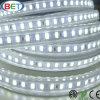 고전압 유연한 LED 옥외 지구 빛을%s 중간 플러그