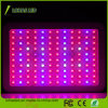 lo spettro completo dei doppi chip dell'indicatore luminoso 120X10 della pianta di 1200W LED si sviluppa chiaro per la coltura idroponica