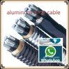 Câble blindé d'alliage d'aluminium de bande en acier de XLPE