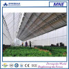 3kw Greenhouse System mit Thin Film Transparent Modules