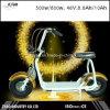 собственная личность колеса 800W Citycoco/Seev/Woqu 2 балансируя электрический самокат