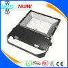 Diodo emissor de luz ao ar livre Fluter Light, 100W diodo emissor de luz Flood Light