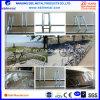 Sales (EBIL-ZXCHJ)のためのEbil Bike Rack