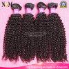 Weave Kinky Mongolian do cabelo Curly do cabelo do Virgin de duas cores