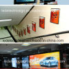 Stairway Wall Mounted Aluminum Frame LED Sign Board를 가진 지하철 Slim LED Light Box Advertizing Display