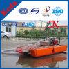 Petite machine de dragage de Qingzhou Keda