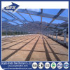 Flattop Metal Frame Isolé Prefabricated / Prefab Poultry House