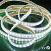 alto indicatore luminoso al neon della corda della flessione di luminosità LED di 110V 220V