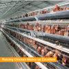 Las aves de corral contienen el edificio agrícola de pollo de la estructura de acero un tipo jaula de batería