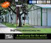 Панельный дом Wellcamp зеленый модульный