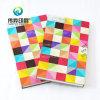 El rectángulo colorido tiene gusto de un libro para las instrucciones