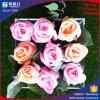 A caixa acrílica para o indicador da flor preservou a venda por atacado da caixa de presente da flor