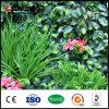Il fiore artificiale del PE poco costoso della decorazione di cerimonia nuziale pianta le barriere con il Ce dello SGS