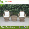 Mesa de centro original e Chair de Design Outdoor Furniture Rattan/Wicker