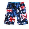 Quick Dry Fabric를 가진 남자의 Fashion Printed Beach Shorts