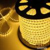Striscia di tensione 110V/220V 60LED 3528 LED (LM3528-50-220V)
