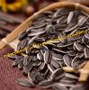 Les graines de tournesol 5009 avec la bonne qualité et les ventes chaudes (260-270PCS/50g)