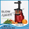 Agregado familiar Slow Speed Multi-Function Power Juicer com C.A. Motor (RJ-202)