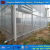 Estufa agricultural da película do baixo custo para a pimenta do tomate do pepino
