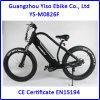 1000W 중앙 드라이브 전기 뚱뚱한 자전거 또는 먼지 자전거