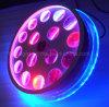 Nuevas 16X3w RGBW luces del efecto de la flor LED del vórtice de la rotación de Víspera de Todos los Santos