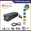 630W de Elektronische Ballast CMH kweekt Hydroponic Lichten 1000W kweekt Systemen